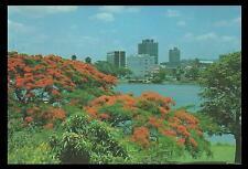 POINCIANA TREES in BRISBANE in 1976 POSTCARD Australia Post 18c  PRE-PAID MINT