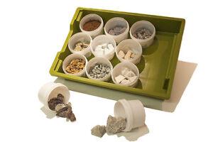 Classroom Rock Geology Teaching Set - Education Rock Samples ✔UK Seller