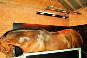 Equine Solarium by Sun Horse UK * Dual Wing