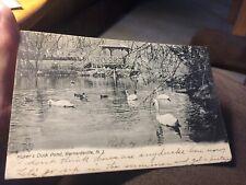 Kuser's Duck Pond, Bernardsville, NJ