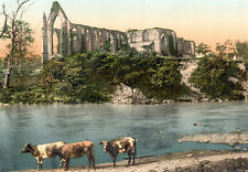"P6 Vintage 1890's Photochrom Photo Bolton Abbey -  Print A3 17""x12"