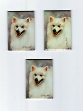 New American Eskimo Magnet Set 3 Magnets By Ruth Maystead Aek-2