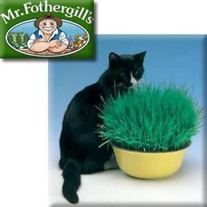 Mr. Fothergills Cat Grass Seed Kit - Laxative Digestive Aid - Just add Water !