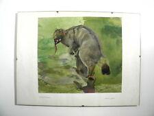 Wildkatze - schönes altes Aquarell - Arthur Seufert * 1882-1973