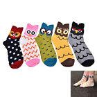 OWL 3D cartoon comfortable cotton socks women lovely style harajuku meias soks W