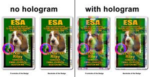 ESA Dog Asclepius Medical Symbol ADA green Badge wallet card ID