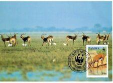 WWF Black Lechwe Antelope Maxi Postcard FDC Zambia 1987 FREE SHIPPING
