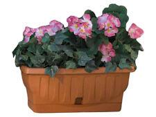 Vaso di terracotta per piante