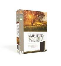 Amplified Holy Bible, Large Print, Bonded Leather, Burgundy: Captures the Full Meaning Behind the Original Greek and Hebrew by Zondervan Publishing (Leather / fine binding, 2015)