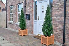2 Large Best Artificial 5ft 150cm Topiary Cedar Outdoor Trees alt Bay Cypress
