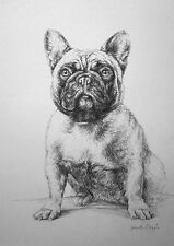 Customised Pet Portrait From Photographs - Pencil Drawing Dog Cat Horse Bird