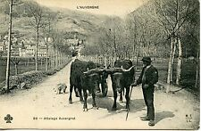 CARTE POSTALE / L'AUVERGNE ATTELAGE AUVERGNAT