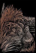 Kratzbild Kratzbilder Enten im Gras Tiermotiv Kupfer Komplettset 20 cm x 25 cm