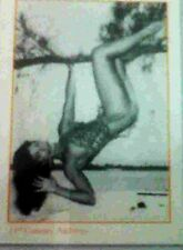 Bunny Yeager's BETTIE PAGE TRADING CARDS PROMO