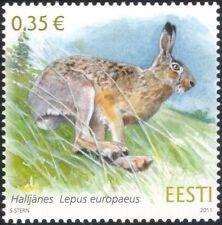 Estonia 2011 Lepre/Animali/Fauna Selvatica/NATURA/conservazione 1 V (ee1045)