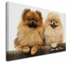 More details for pomeranian dogs 'love you dad' x-large 30