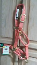 "Yearling Weaver Original Adjustable Chin Throat Horse Snap 1"" Nylon Halter coral"