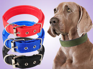 Pets Dog Collar with Buckle Durable Adjustable Soft Puppy Cat Leash Strap