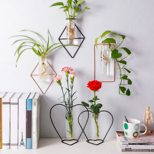 Wall Hanging Flower Pot Iron Hydroponic Plant Vase with Test Tube Home Decor