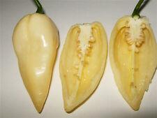 BHUT JOLOKIA WHITE pure seeds