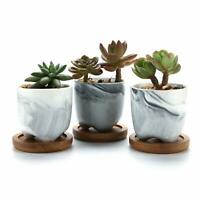 Pack of 3 Ceramic Succulent Cactus Planter Pot 2.3 Inch with Bamboo Tray New