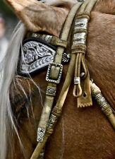 Ornate Headstall horse western pleasure tack cross-stitch pattern, #893