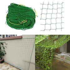Climbing Plant Garden Net Plastic Support Mesh Netting Clematis Pea Bean Trellis