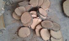 10 Baumscheiben, Baumscheibe, Holzscheibe, 18-22 x 2-3 cm, Eiche