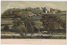 Carisbrook Castle, Isle of Wight F.G.O. Stuart 153 Postcard B800