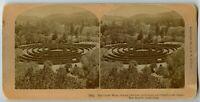San Rafael California Great Maze Vintage Stereoview Photo 1895