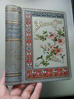 2 Bücher Blumen und Sterne um 1900 + Palmenblätter um 1900
