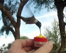 *1* HAND HELD HUMMINGBIRD FEEDER  BY AMAZING BIRD STUFF - New bee guard port