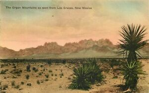 1932 NEW MEXICO HAND COLORED POSTCARD: ORGAN MOUNTAINS FROM LAS CRUCES, NM