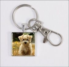 DOG MORKIE PUPPY IN MEADOW KEY CHAIN OR PURSE CHARM SQUARE -fgv6Z