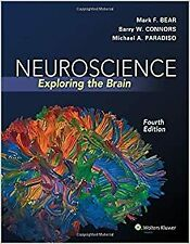 [E-edition] Neuroscience Exploring the Brain 4th Ed