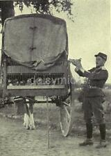 French Army Soldier Releasing Carrier Pigeon  World War 1 7x5 Inch Reprint Photo