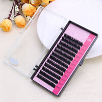 Mink Blink Lashes Tray Lash B C D J Curl For Individual Eyelash Extensions NR