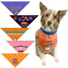 5 Fun Dog Bandanas - Med to Large Dog Accessory - Dog Lover Gift