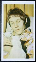 Mike D'Abo   Manfred Mann     Vintage  Photo Card # VGC