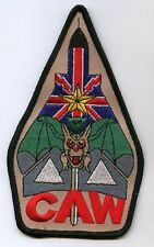 '90 GULF WAR RAF BRITISH TORNADO FIGHTER BOMBE Op TELIC Carrier Air Wings (CAWs)