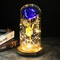 LED Rose Eternal  Flower With Fairy String Lights In Dome Valentine's Day Gift