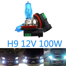 2x H9 12V Halogen Car Bulbs Headlight Lamp Globes White 6000K 100W Car Fog Light