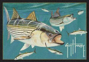 Milliken Guy Harvey Striped Bass Area Rug