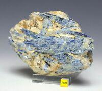 Superb Blue Kyanite and Quartz Crystal Cluster - Raw Mineral Specimen 1068g