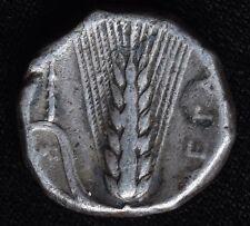 Ancient Coin - LUCANIA, METAPONTUM 350-330 BC