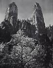 1959 Vintage ANSEL ADAMS Mountain Peak Yosemite Valley Landscape Photo Art 12X16