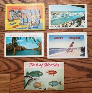 5 Florida Fold Out Postcard Mailers 50's/60's vintage