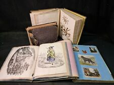 More details for 1880-1910 victorian scrap albums joblot 4 in total 150 pages of scraps