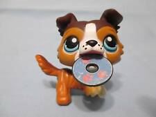 Littlest Pet Shop Collie Dog Puppy #237 Open Mouth Brown Tan White LPS with Disc