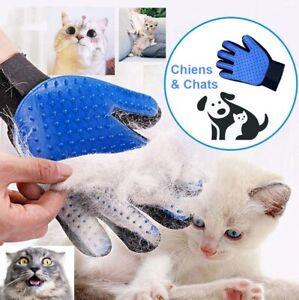 Gant Chien Chat Poils Brosse Brossage Massage Attrape Toilettage Pelage Soin
